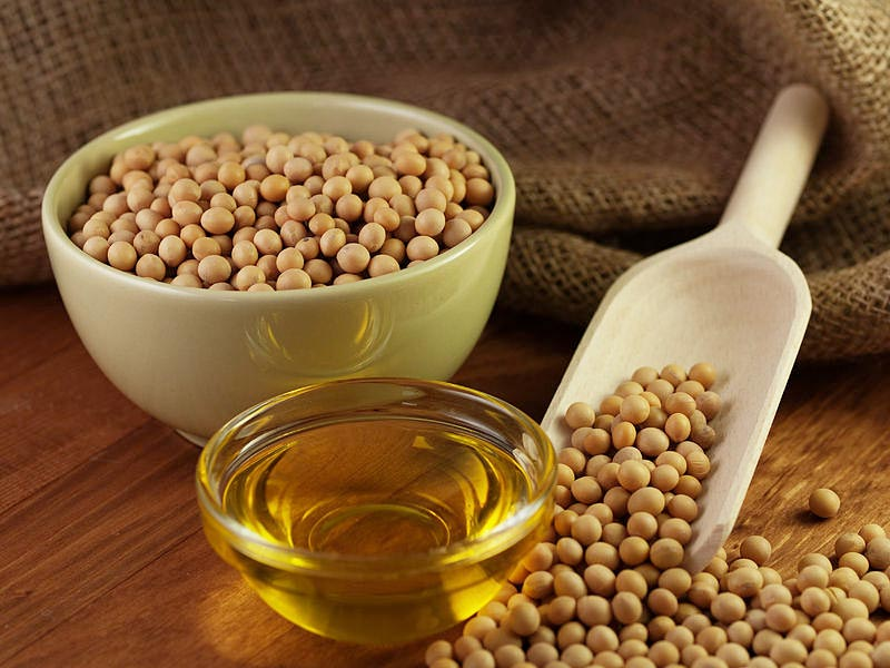 indian soyabean oil industry